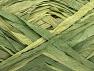 Fiber Content 100% Polyamide, Brand ICE, Green Shades, fnt2-62201